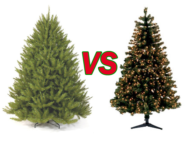 in last weeks newsletter we posted a link to an article highlighting the pros and cons of real trees and fake trees anens melissa and debra have been